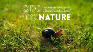 Ode to Nature by Emiliano Bechi Gabrielli